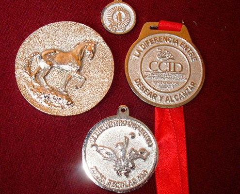 MEDALLAS - Medallas Pins